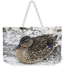 Duck Setting On A Winter Road Weekender Tote Bag
