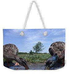 Ducks Eye View Weekender Tote Bag