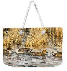 Ducks In A Row Weekender Tote Bag