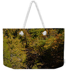 Dunbar Cave And Swan Lake Weekender Tote Bag