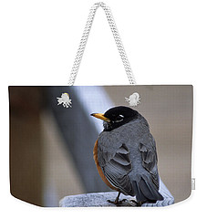 Weekender Tote Bag featuring the photograph Early Bird by Sharon Elliott