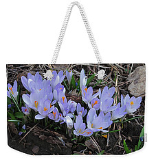Early Crocuses Weekender Tote Bag