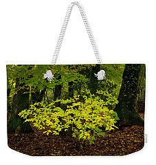 Early Fall In Bidwell Park Weekender Tote Bag