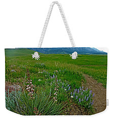 Early Summer Walk Weekender Tote Bag