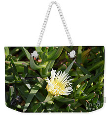 Weekender Tote Bag featuring the photograph Earth Music by Laurie L