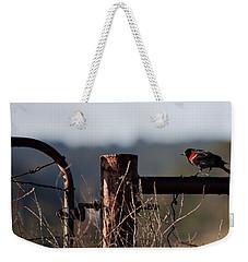 Eary Morning Blackbird Weekender Tote Bag