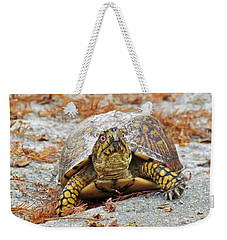 Weekender Tote Bag featuring the photograph Eastern Box Turtle by Cynthia Guinn