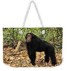 Eastern Chimpanzee Gombe Stream Np Weekender Tote Bag by Thomas Marent