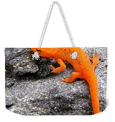 Orange Julius The Eastern Newt Weekender Tote Bag by Lori Pessin Lafargue