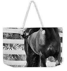 Ebony Beauty Weekender Tote Bag