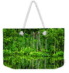 Weekender Tote Bag featuring the photograph Eden 38 Oil by Mark Myhaver
