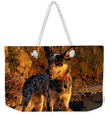 Weekender Tote Bag featuring the photograph Edge Of Glory by James Peterson