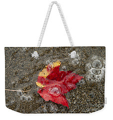 Leaf And Sand Weekender Tote Bag by Alana Ranney