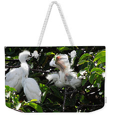 Egret Chicks Weekender Tote Bag