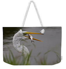 Weekender Tote Bag featuring the photograph Egret Having Lunch by Jerry Gammon