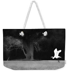 Weekender Tote Bag featuring the photograph Egret's Shadow by Frank Bright