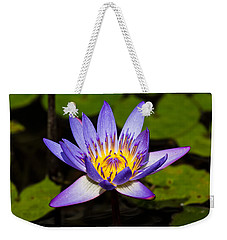 Egyptian Blue Water Lily  Weekender Tote Bag