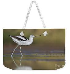Elegant Avocet Weekender Tote Bag by Bryan Keil