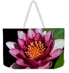 Elegant Lotus Water Lily Weekender Tote Bag