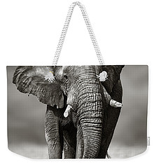 Elephant Approach From The Front Weekender Tote Bag by Johan Swanepoel