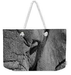 Elephant Bw Weekender Tote Bag