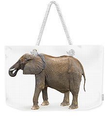 Weekender Tote Bag featuring the photograph Elephant by Charles Beeler
