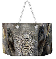 Elephant Close Up 1 Weekender Tote Bag