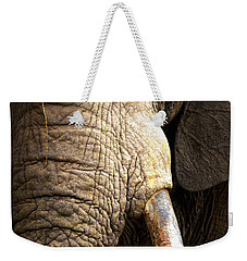 Elephant Close-up Portrait Weekender Tote Bag