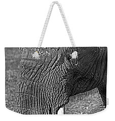 Elephant.. Dont Cry Weekender Tote Bag by Miroslava Jurcik