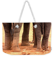 Weekender Tote Bag featuring the photograph Elephant Family by Amanda Stadther