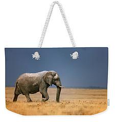 Elephant In Grassfield Weekender Tote Bag