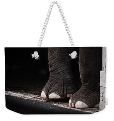 Elephant Toes Weekender Tote Bag by Bob Orsillo