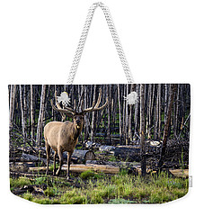 Elk In The Woods Weekender Tote Bag