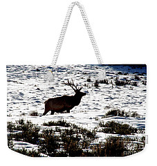 Weekender Tote Bag featuring the photograph Elk Silhouette by Sharon Elliott