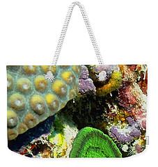 Emerald Artichoke Coral Weekender Tote Bag by Amy McDaniel