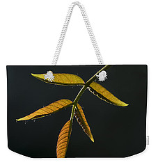 Weekender Tote Bag featuring the photograph Emergence by Yulia Kazansky