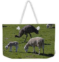 Emu And Sheep Weekender Tote Bag