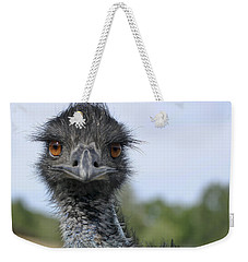 Weekender Tote Bag featuring the photograph Emu Gaze by Belinda Greb