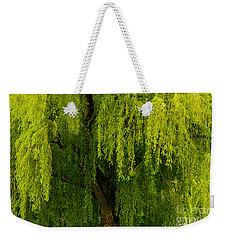 Enchanting Weeping Willow Tree  Weekender Tote Bag by Carol F Austin