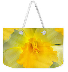 Weekender Tote Bag featuring the photograph Endless Yellow Daffodil by Judy Palkimas