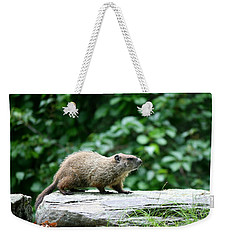 Enter Groundhog Weekender Tote Bag by Neal Eslinger