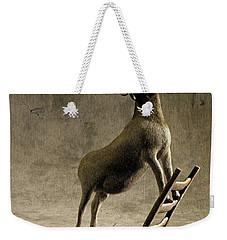 Equilibrium Weekender Tote Bag