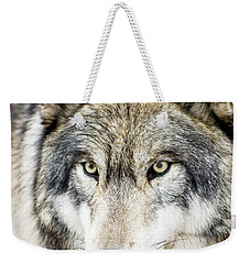 Weekender Tote Bag featuring the photograph Essence Of Wolf by Gary Slawsky