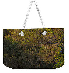Weekender Tote Bag featuring the photograph Eume River Galicia Spain by Pablo Avanzini