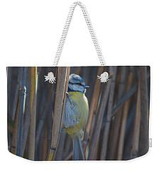Eurasian Blue Tit - Parus Caeruleus Weekender Tote Bag
