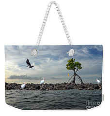 Weekender Tote Bag featuring the photograph Everglade Scene by Dan Friend
