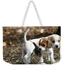 Exploring Beagle Pups Weekender Tote Bag