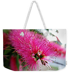 Weekender Tote Bag featuring the photograph Exquisite Pink Bottle Brush by Leanne Seymour