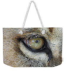 Weekender Tote Bag featuring the photograph Eye Of The Lion by Judy Whitton