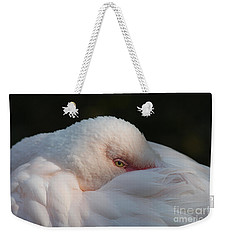 Eye On You Weekender Tote Bag by Judy Whitton